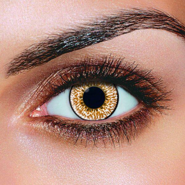Hazel Tone Contact Lenses